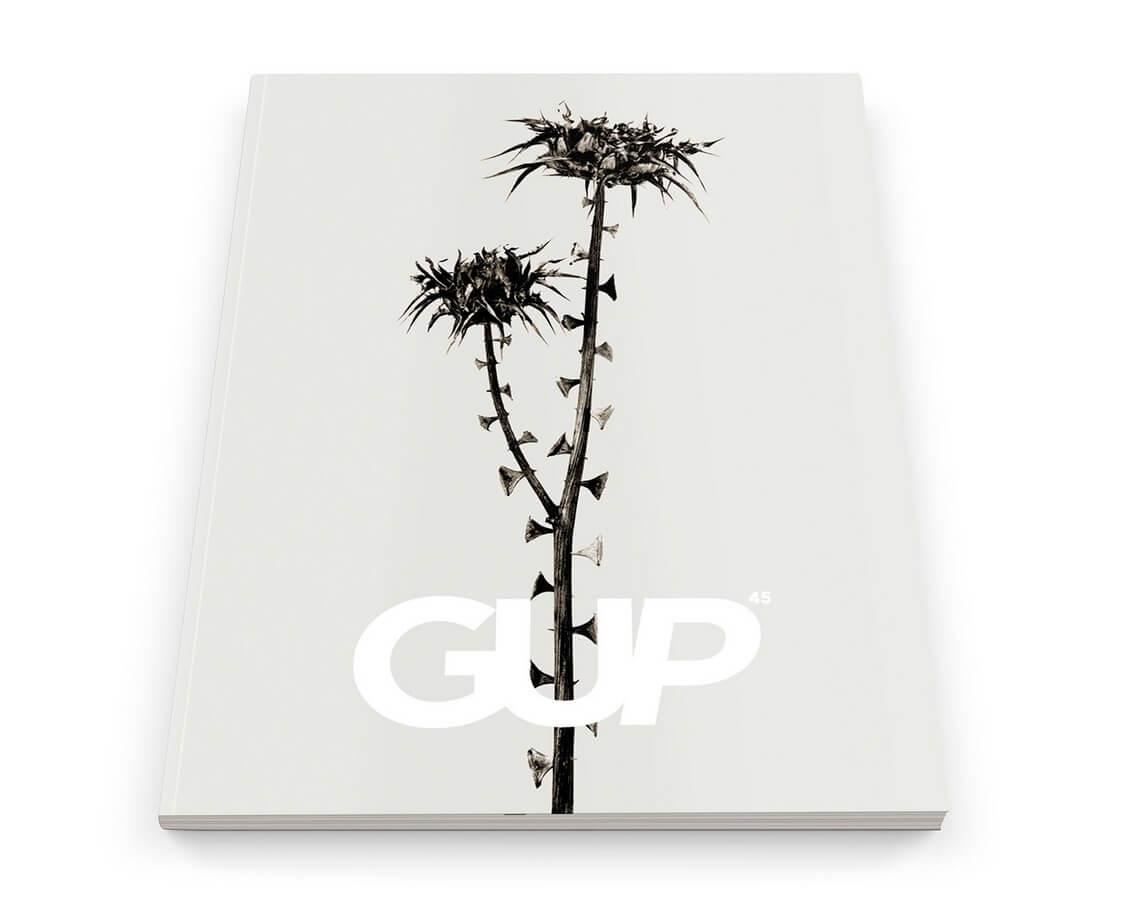 MatthewSwartsGUPMagazineEvolution45