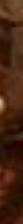 Screen-Shot-2019-11-07-at-1.08.51-PM-1