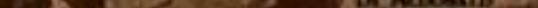 Screen-Shot-2019-11-07-at-1.09.13-PM