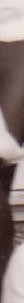 Screen-Shot-2019-11-07-at-1.10.51-PM-2