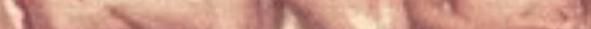 Screen-Shot-2019-11-07-at-1.10.58-PM-2