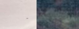 Screen-Shot-2019-11-07-at-1.11.05-PM-2